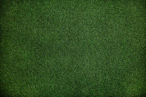 wertykulacja trawnika radom