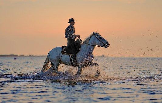 wytrzymały kaski jeździeckie fair play